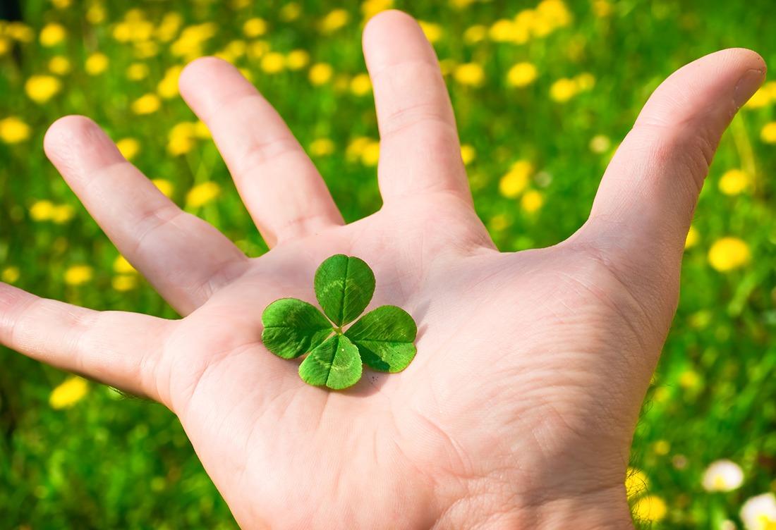 Как приручить удачу